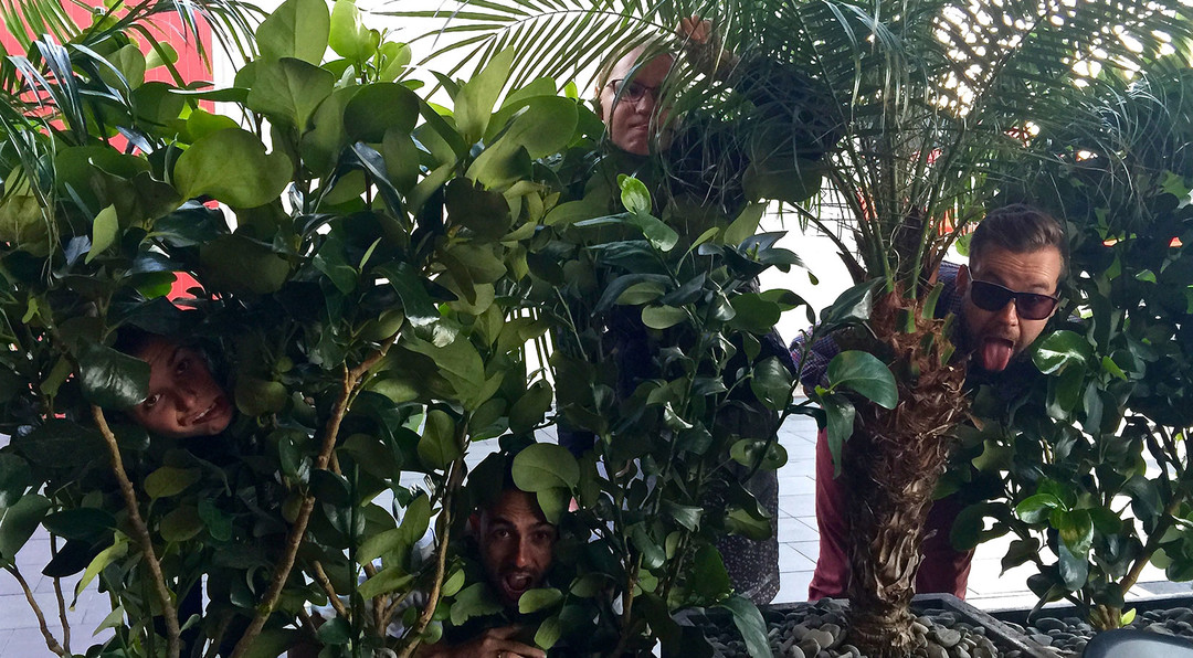 funny image of people peering through some bushes
